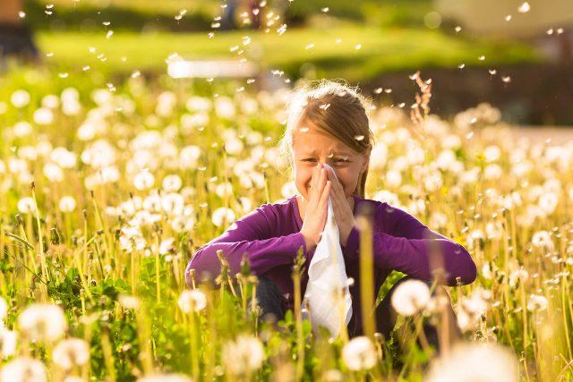Pollenallergiker aufgepasst: Die Frühblüher kommen!
