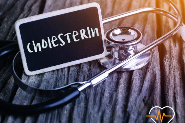 Cholesterin – wichtig für den ganzen Körper!