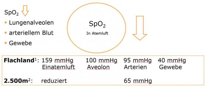 Auswirkungen von niedriger Sauerstoffpartialdruck auf unseren Körper im Vergleich